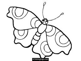 butterfly big eyes coloring pages for printable 436738 coloring