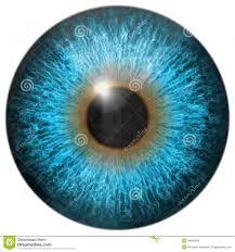 Iris by Set Of Eye Iris Generated Textures Stock Illustration Image