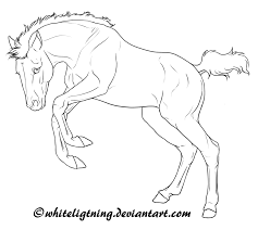 free horse lineart jumping foal by whiteligtning on deviantart