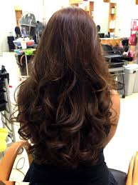 back of the hair long layers long layered hairstyles 2015 back google search hairstyles