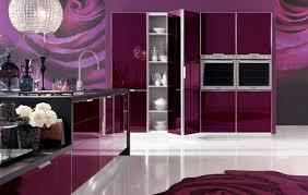 Designer Kitchen Utensils Kitchen Ideas Purple Kitchen Decorating Ideas Purple Kitchen