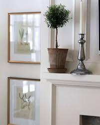 Mantel Topiaries - 230 best topiary images on pinterest topiaries black windows