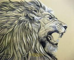 realistic lion drawing pencil drawings of jesus lion roar
