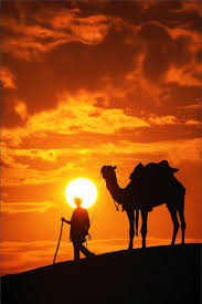 Sunset Orange by Best 10 Desert Sunset Ideas On Pinterest Sun Sets Sky New Live