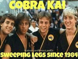 Nerd Karate Kid Meme - pin by sean gray on sean likes pinterest movie films and movie tv