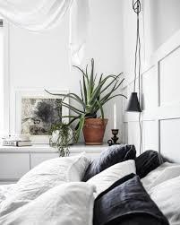 plante verte chambre à coucher quelle plante avoir dans la chambre