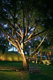 landscape lighting ideas trees with image of led lighten up
