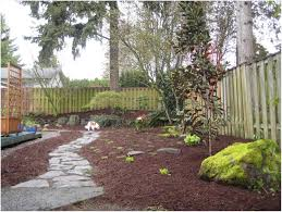 backyard ideas for dogs that dig kloiding date