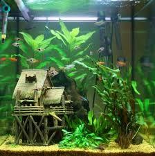 original aquarium decoration 17 fantastic ideas