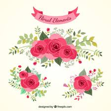 Rose Flower Design Roses Vectors Photos And Psd Files Free Download
