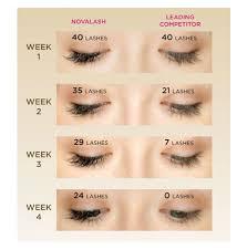 professional eyelash extension lash counts eyelashes extensions