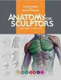Anatomy And Physiology Dictionary Free Download Understanding Anatomy U0026 Physiology 2nd Edition Pdf Download