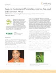Seeking Sub Seeking Sustainable Protein Sources For Asia And Sub Saharan