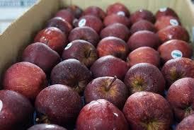 buy fruit online fresh fruits and seasonal fruit retailer buy fruits online mumbai