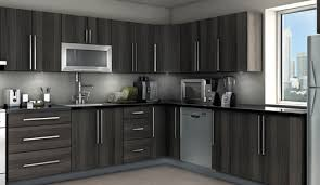 ideas for kitchen cabinets amazing chic 13 pictures of kitchens
