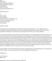 3 best images of executive job cover letter sales account