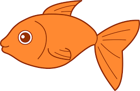goldfish clipart pet fish pencil and in color goldfish clipart