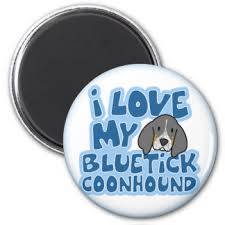 bluetick coonhound names bluetick coonhound gifts on zazzle