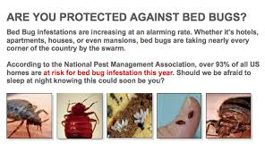 Can Bed Bugs Survive Outside How To Get Rid Of Bed Bugs Forever 15 Natural Ways
