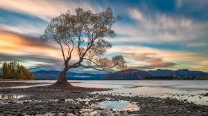 lake wanaka new zealand back to nature traveldigg