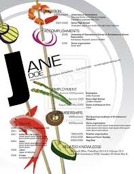 Best Infographic Resume by 22 Best Infographic Resumes Images On Pinterest Infographic