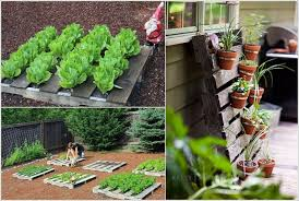 Diy home garden projects Home and home ideas