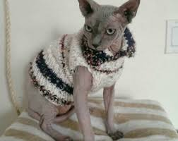 sphynx sweaters cat clothes sphynx etsy