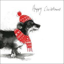 children with cancer 5 charity christmas cards dachshund daschund