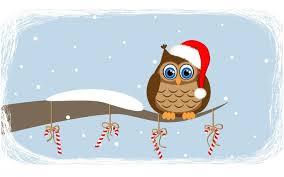 owl christmas christmas owl 7 mr