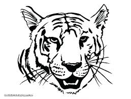 coloring page tiger paw coloring page tiger paw pages of tigers color a white tig shandyis me