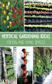 Patio Herb Garden Ideas Herb Gardens For Small Spaces Swebdesign