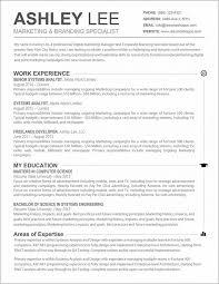 basic resume templates 2013 basic cv format resume resume exles arzepbqp1o