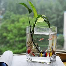 plante verte dans une chambre lе vase en verre un joli dé de la déco archzine fr