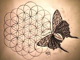 butterfly on the flower of life my art pinterest butterfly