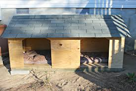 how to build your own dog house plans home act