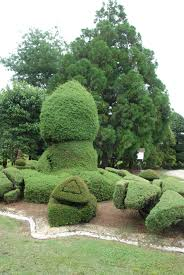Horse Topiary Pearl Fryar U0027s Free Form Topiary Style Is Unlike Any Other Type Of