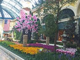 spring blooms at the palazzo u0026 bellagio las vegas blogs