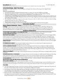 sample resume marketing executive sample online marketing manager resume manager resume sample mr