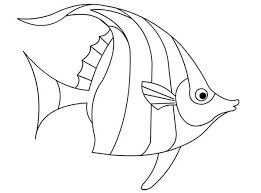 beautiful angel fish colouring happy colouring