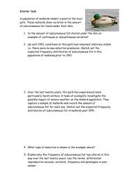 the human digestive system worksheet by mr science teaching