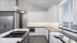 Grey Wash Kitchen Cabinets Kitchen Grey Kitchen Paint Cabinet Stain Colors Kitchen Cabinet
