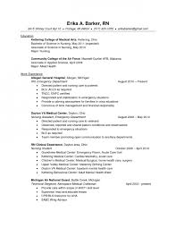 Labor And Delivery Nurse Resume Sample College Dropout Essay Outline Should Iran Have Nuclear Weapons
