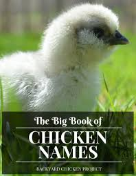Chicken Running Meme - the essential list of chicken names