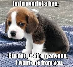 Give Me A Hug Meme - meme maker im in need of a hug but not just from anyone i want
