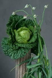 Make A Vegetable Garden by How To Make A Vegetable Garden Bestcoffi Com