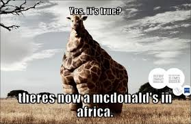 Africa Meme - yes it s true theres now a mcdonad s in africa meme boomsbeat