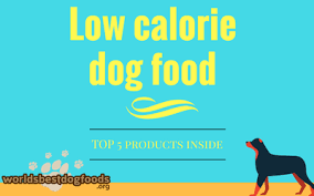 science diet light calories best low calorie dog food what to look for your overweight or