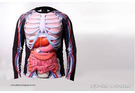 Human Anatomy T Shirts Anatomy T Shirt 3d