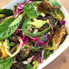 napa salad napa cabbage and bok choy salad two of a