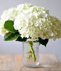 wedding flowers on a budget top 5 most popular wedding flowers bloomerent
